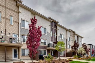 Photo 37: 32 804 WELSH Drive in Edmonton: Zone 53 Townhouse for sale : MLS®# E4246512