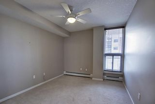 Photo 25: 302 429 14 Street NW in Calgary: Hillhurst Apartment for sale : MLS®# A1075167
