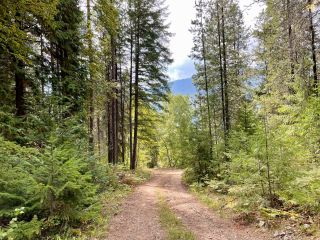 Photo 13: 1969 SANDY ROAD in Castlegar: Vacant Land for sale : MLS®# 2461033