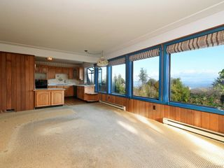 Photo 8: 4931 Lochside Dr in Saanich: SE Cordova Bay House for sale (Saanich East)  : MLS®# 834387