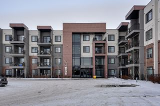 Photo 37: 320 1004 Rosenthal Boulevard: Edmonton Condo for sale : MLS®# E4141285