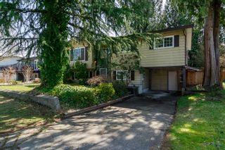 Photo 7: 20838 117th Avenue in MAPLE RIDGE: Home for sale
