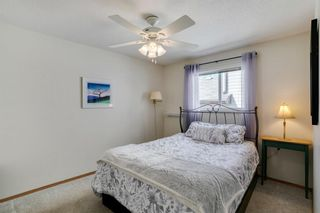 Photo 14: 164 Coventry Circle NE in Calgary: Coventry Hills Detached for sale : MLS®# A1102725