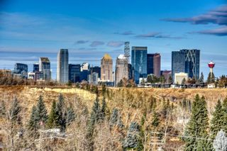 Photo 42: 22 Lissington Drive SW in Calgary: North Glenmore Park Residential for sale : MLS®# A1066780