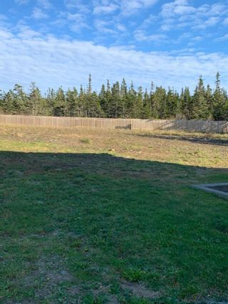 Photo 3: 6656 Highway 3 in Woods Harbour: 407-Shelburne County Residential for sale (South Shore)  : MLS®# 202023147