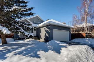 Photo 30: 266 Banister Drive: Okotoks Residential for sale : MLS®# A1070083