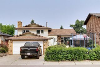 Main Photo: 187 Templeton Circle NE in Calgary: Temple Detached for sale : MLS®# A1129588