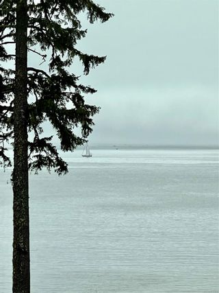 Photo 39: 1154 2nd Ave in : PA Salmon Beach House for sale (Port Alberni)  : MLS®# 883575
