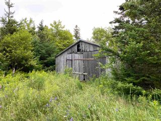 Photo 25: 519 JW MCCULLOCH Road in Meiklefield: 108-Rural Pictou County Farm for sale (Northern Region)  : MLS®# 202117518
