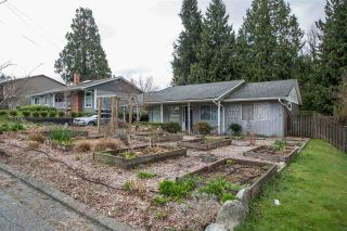 FEATURED LISTING: 8517 TERRACE Drive Delta