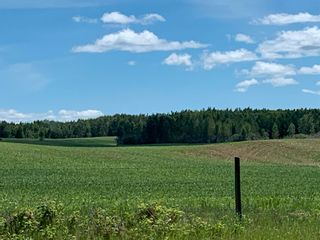 Photo 1: TWP 475 RR 31: Rural Leduc County Rural Land/Vacant Lot for sale : MLS®# E4244953