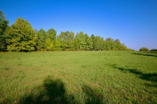 Photo 17: 1857B Highway 602 HWY in Fort Frances: Vacant Land for sale : MLS®# TB212603