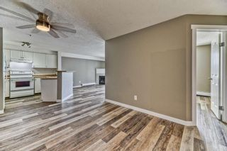 Photo 4: 337 1717 60 Street SE in Calgary: Red Carpet Apartment for sale : MLS®# A1067174