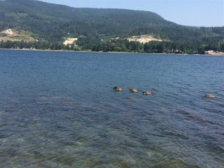 Photo 4: 6051 KINGFISHER Avenue in Sechelt: Sechelt District Land for sale (Sunshine Coast)  : MLS®# R2561268
