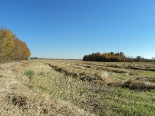 Photo 3: RR 25 HWY 661: Rural Westlock County Rural Land/Vacant Lot for sale : MLS®# E4236665