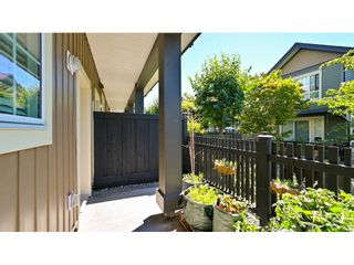 """Photo 18: 41 4967 220 Street in Langley: Murrayville Townhouse for sale in """"Winchester Estates"""" : MLS®# R2596743"""