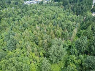 Photo 11: 2555 Cumberland Rd in Courtenay: CV Courtenay City Unimproved Land for sale (Comox Valley)  : MLS®# 879243