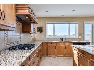 Photo 10: 48142 320 Avenue E: Rural Foothills M.D. House for sale : MLS®# C4098946