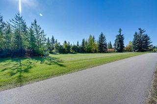 Photo 46: 11705 71A Avenue in Edmonton: Zone 15 House for sale : MLS®# E4245212