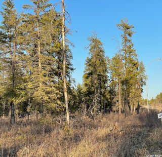 Photo 2: Over 1 acre lots in Hudson Bay: Lot/Land for sale : MLS®# SK850482