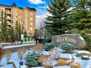 Photo 1: 111 10 Discovery Ridge Close SW in Calgary: Discovery Ridge Apartment for sale : MLS®# A1051537