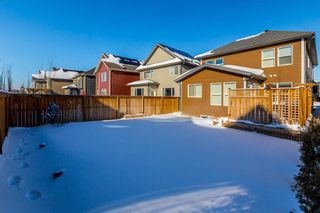 Photo 44: 169 CRANARCH CM SE in Calgary: Cranston House for sale : MLS®# C4226872