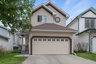Main Photo: 171 Martin Crossing Park NE in Calgary: Martindale Detached for sale : MLS®# A1132386