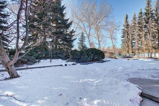 Photo 42: 1139 Varsity Estates Drive NW in Calgary: Varsity Detached for sale : MLS®# A1060961