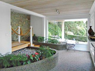 Photo 7: 3855 BAYRIDGE Avenue in West Vancouver: Bayridge House for sale : MLS®# R2540779