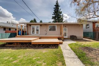 Photo 34: 380 Alcott Crescent SE in Calgary: Acadia Detached for sale : MLS®# A1130065