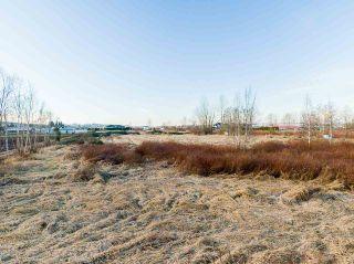 Photo 13: 3762 - 3792 176 Street in Surrey: Serpentine Land for sale (Cloverdale)  : MLS®# R2532600
