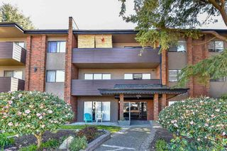 """Photo 19: 206 1554 GEORGE Street: White Rock Condo for sale in """"The Georgian"""" (South Surrey White Rock)  : MLS®# R2052627"""