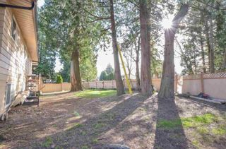Photo 12: 13318 65 Avenue in Surrey: West Newton House for sale : MLS®# R2561150