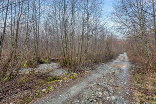 Photo 52: NE1/4SEC15 Gordon River Rd in Port Renfrew: Sk Port Renfrew Land for sale (Sooke)  : MLS®# 864408