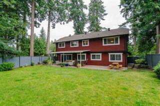 Photo 19: 20438 93A AVENUE in Langley: Walnut Grove House for sale : MLS®# R2388855