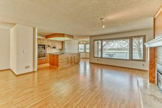 Photo 9: 119 East Chestermere Drive: Chestermere Semi Detached for sale : MLS®# A1082809