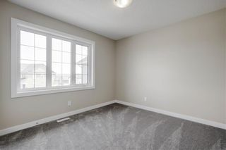 Photo 28: 223 EVANSGLEN Circle NW in Calgary: Evanston Detached for sale : MLS®# A1039757