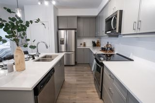 Photo 12:  in Calgary: Auburn Bay Apartment for sale : MLS®# A1115448