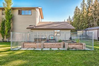Photo 43: 32571 Rge Rd 52: Rural Mountain View County Detached for sale : MLS®# A1152209