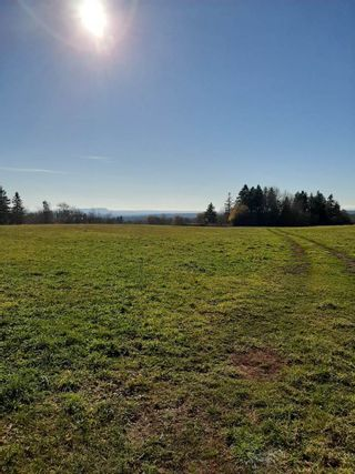 Photo 2: Scotch Hill Road in Lyons Brook: 108-Rural Pictou County Vacant Land for sale (Northern Region)  : MLS®# 202103498