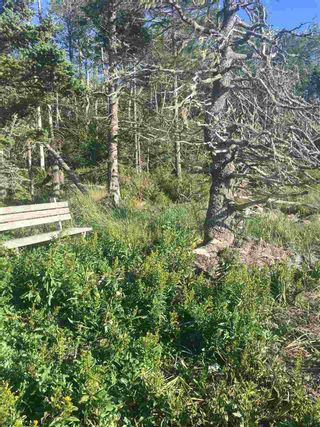 Photo 8: Lot Highway 3 in East Green Harbour: 407-Shelburne County Vacant Land for sale (South Shore)  : MLS®# 202101579