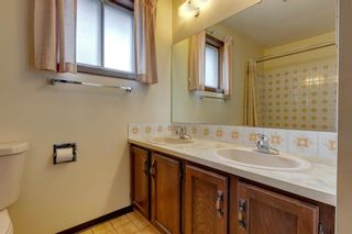 Photo 24: 147 Templevale Place NE in Calgary: Temple Detached for sale : MLS®# A1144568