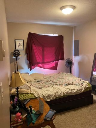 Photo 8: 859 9th Ave in : CR Campbell River Central Multi Family for sale (Campbell River)  : MLS®# 883724