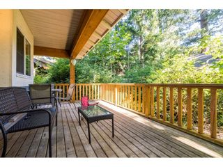 """Photo 31: 43573 RED HAWK Pass: Lindell Beach House for sale in """"The Cottages at Cultus Lake"""" (Cultus Lake)  : MLS®# R2477513"""