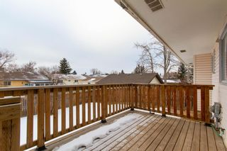 Photo 34: 3807 49 Street NE in Calgary: Whitehorn Detached for sale : MLS®# A1066626