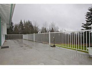 Photo 15: 33262 RICHARDS Avenue in Mission: Mission BC House for sale : MLS®# F1439332