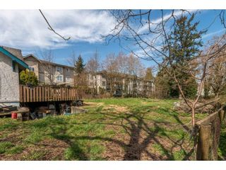 Photo 6: 20037 56 Avenue in Langley: Langley City House for sale : MLS®# R2558038