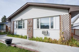 Photo 8: 3307 39 Street SE in Calgary: Dover Detached for sale : MLS®# A1148179