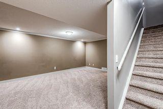 Photo 34: 39 Abbeydale Villas NE in Calgary: Abbeydale Row/Townhouse for sale : MLS®# A1138689