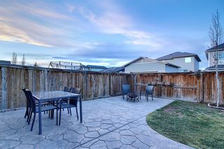 Photo 48: 1009 Prairie Springs Hill SW: Airdrie Detached for sale : MLS®# A1042404